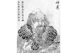 Découverte du thé : mythes et légendes